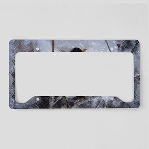 nature winter robin bird License Plate Holder