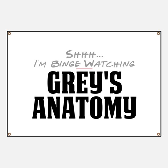 Shhh... I'm Binge Watching Grey's Anatomy Banner