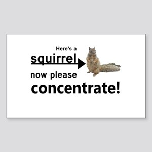 Concentrate on the squirrel Sticker