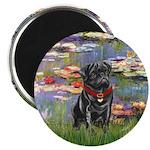 Lilies (#2) & Black Pug Magnet