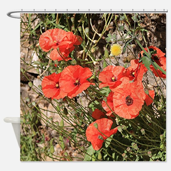 Poppies growing on El Camino, Spain Shower Curtain