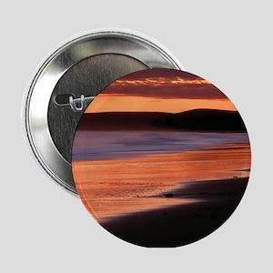 Drakes Bay California Button