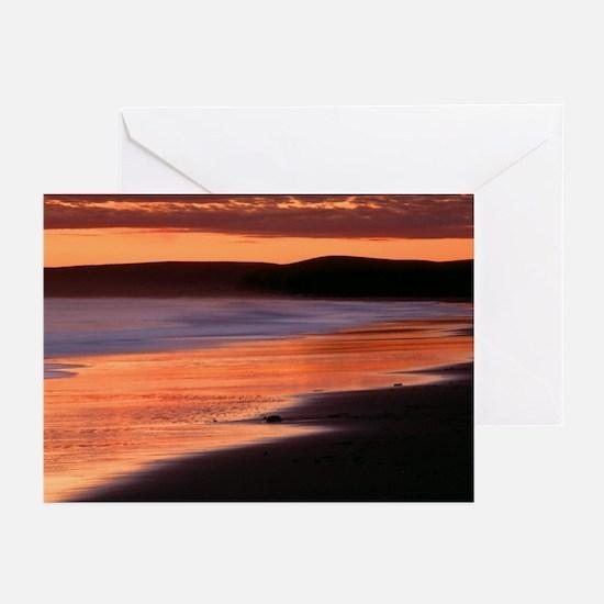 Drakes Bay California Greeting Cards (Pk of 20)
