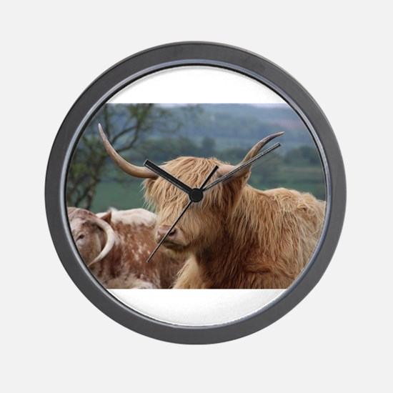 Highland cattle Wall Clock