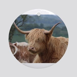 Highland cattle Round Ornament