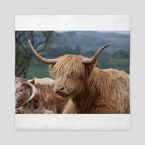 Highland cattle Queen Duvet