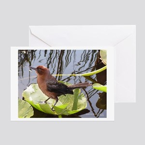 Bird1 Greeting Card