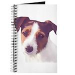 Jack Russell Terrier Journal