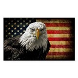 Bald eagle and flag Single