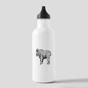 NOT SHY Water Bottle