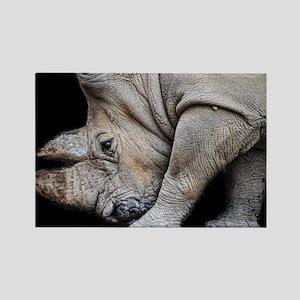 Rhinoceros on Black Rectangle Magnet