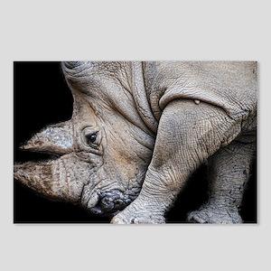 Rhinoceros on Black Postcards (Package of 8)