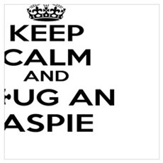Keep Calm and Hug an Aspie Poster