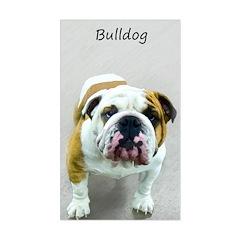 Bulldog Sticker (Rectangle)