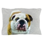 Bulldog Pillow Case