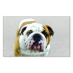 Bulldog Sticker (Rectangle 10 pk)