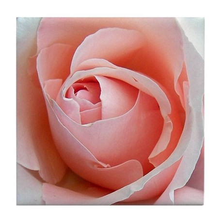 Pink Rose Art Tile