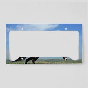 Black Horse Running License Plate Holder