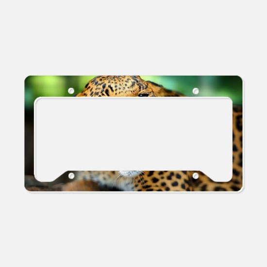 Growling Leopard License Plate Holder