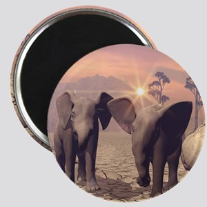 Cute baby elephant Magnets