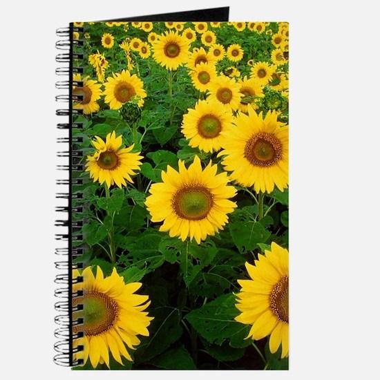 Field of Sunflowers Journal