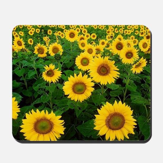 Field of Sunflowers Mousepad