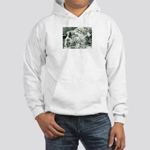 Monk Hooded Sweatshirt