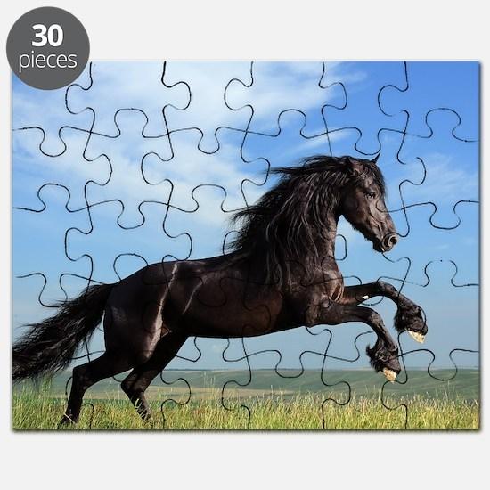 Black Horse Running Puzzle