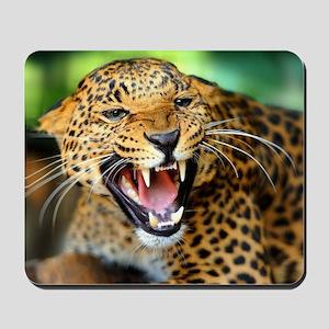 Growling Leopard Mousepad
