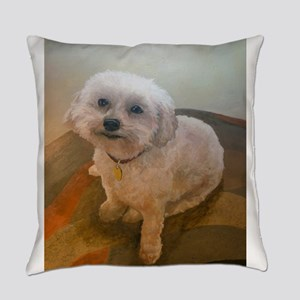 Miniature Poodle Angus Everyday Pillow