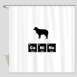 Miniature Australian Shepherd Shower Curtain