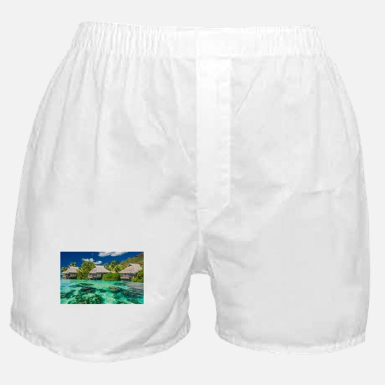 Tropical Water And Bungalow Boxer Shorts