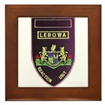 Lebowa Reaction Unit Framed Tile