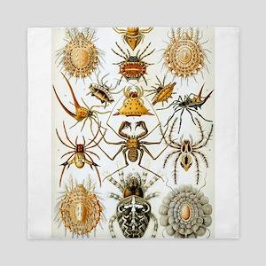 spider chart Queen Duvet