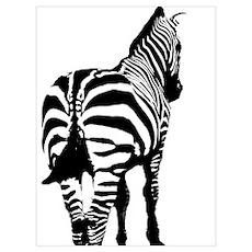 Zebra Backside Poster