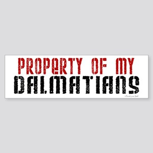 Property Of My Dalmatians Bumper Sticker