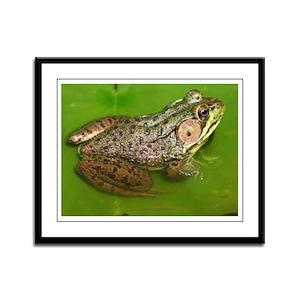 """Amphibian"" Framed Panel (Medium) Print"