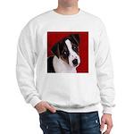 JRT Puppy Ink Sketch Sweatshirt