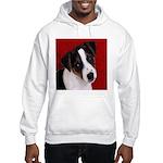 JRT Puppy Ink Sketch Hooded Sweatshirt
