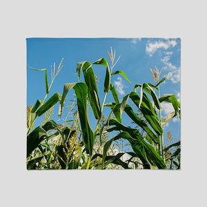 Corn field Throw Blanket