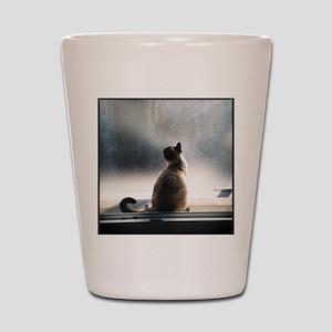 siamese sitting Shot Glass