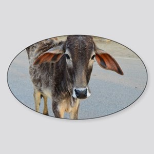 Cow from Holy Place of Bhakti Yoga Sticker (Oval)