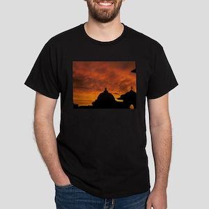 Spirit souls from India land of god bhakti T-Shirt