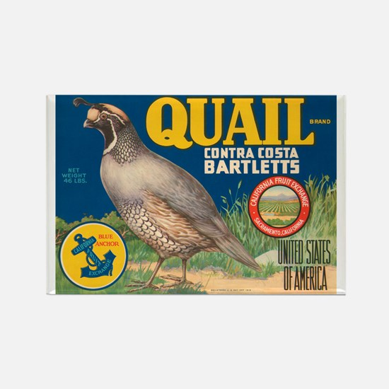 Quail Bartlett Pears Rectangle Magnet