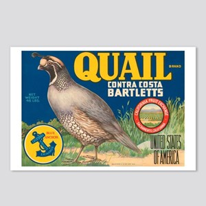 Quail Bartlett Pears Postcards (Package of 8)