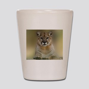 Puma Shot Glass