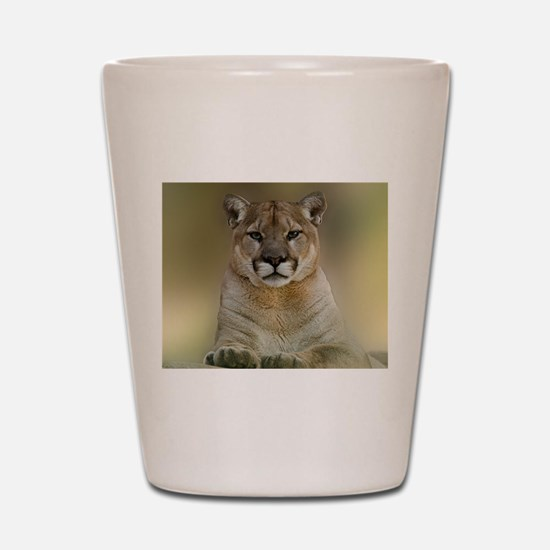 Puma Shot Glass
