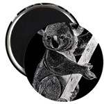 Midnight Koala Magnet