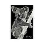 Midnight Koala Rectangle Magnet (10 pack)