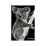 Midnight Koala Rectangle Magnet